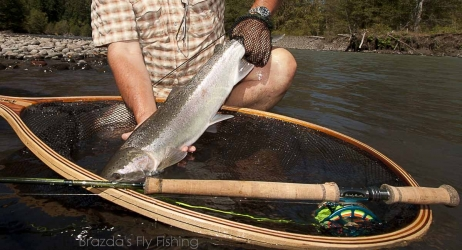 2013 Fall steelhead-Salmon